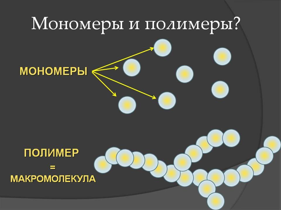 заполните таблицу органические вещества клетки