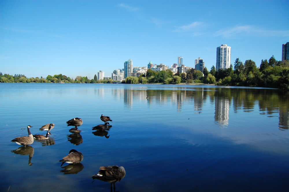 Файл:Vancouver-stanley-park.jpg — Википедия
