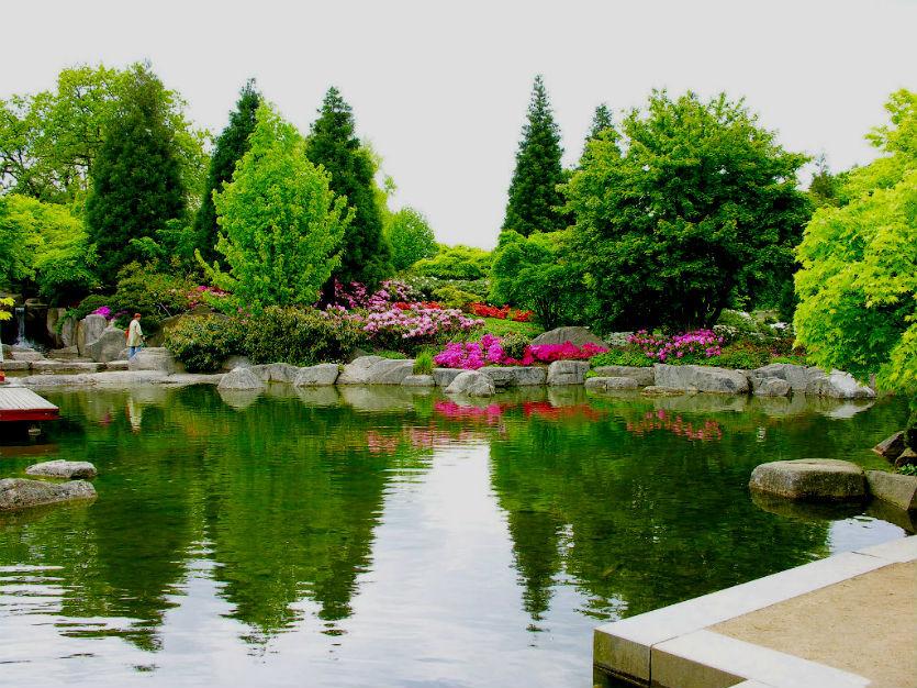 Фото Гамбургский ботанический сад | Гамбург, Германия | Турпром