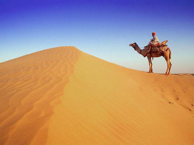 пустыни википедия