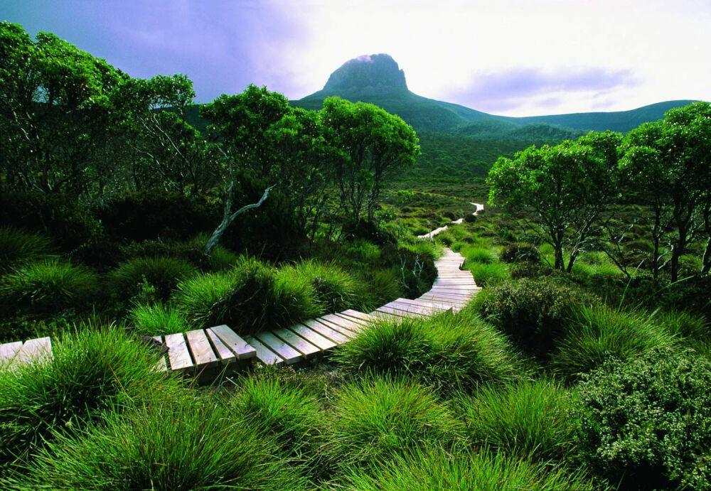 Чудеса природы: Тасмания