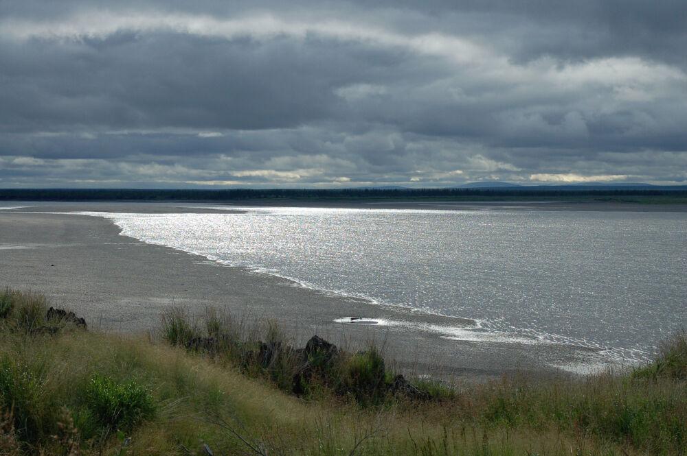 сибирь северо-восточная (главный ключ)