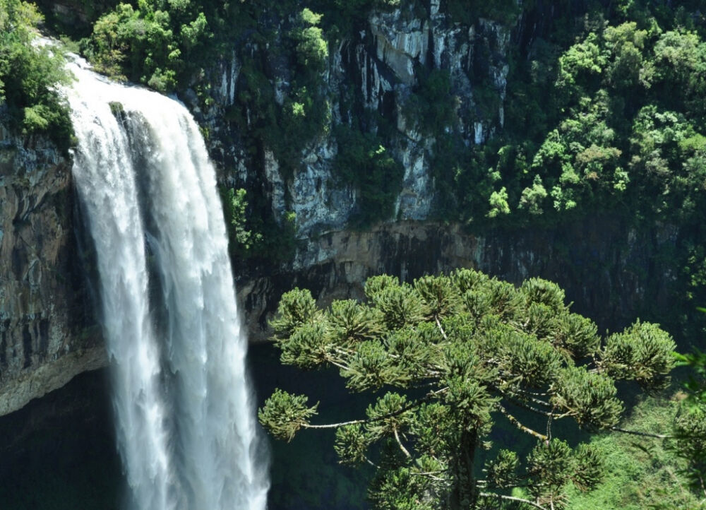 Папуа-Новая Гвинея - отдых, погода, отзывы туристов, фотографии ...