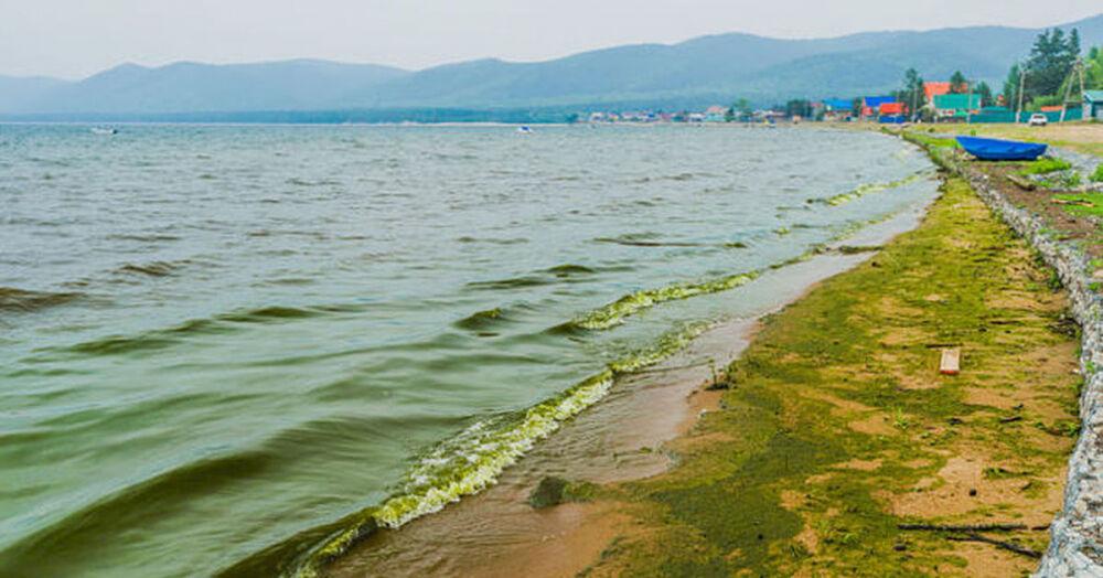проблемы озера байкал