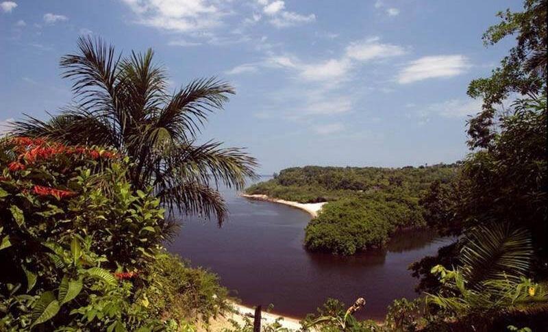 Бразилия: Дождевые леса Амазонии бассейн реки Амазонки » Все чудеса ...