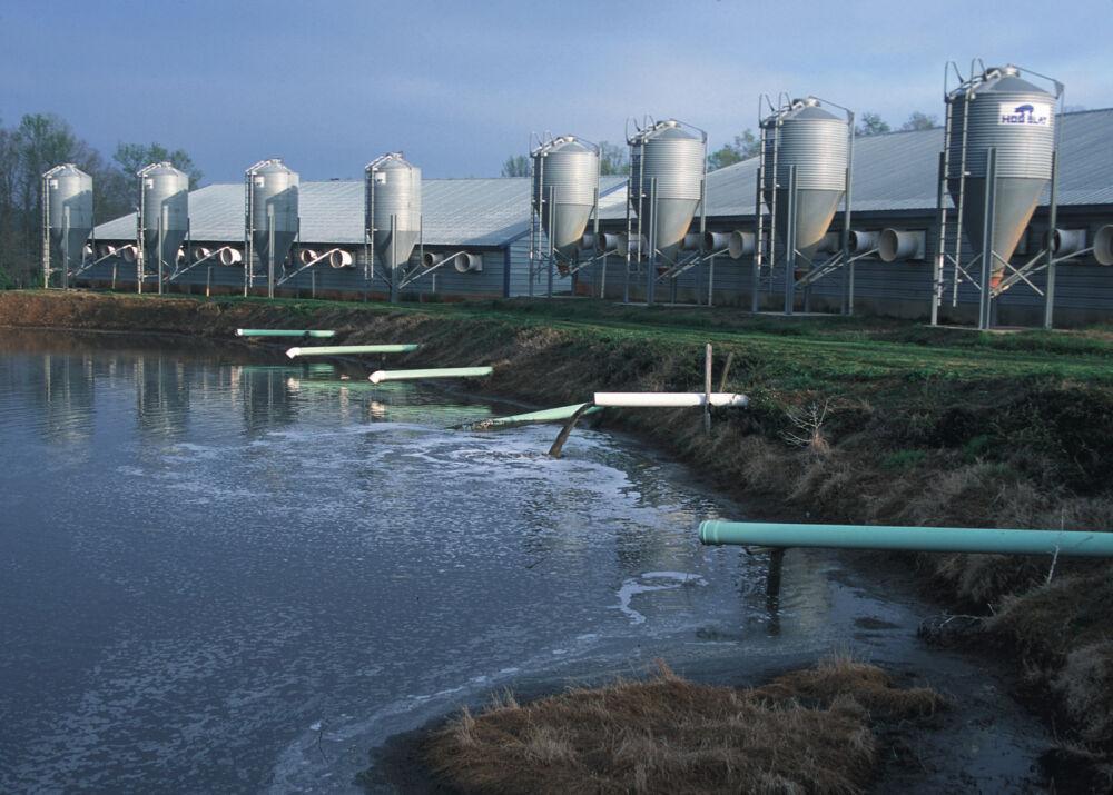 куда впадает река волга (главный ключ)