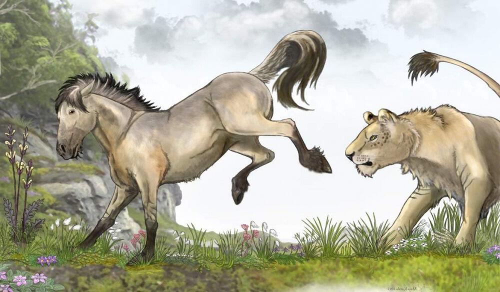 Тарпан – вымершая низкорослая лошадь