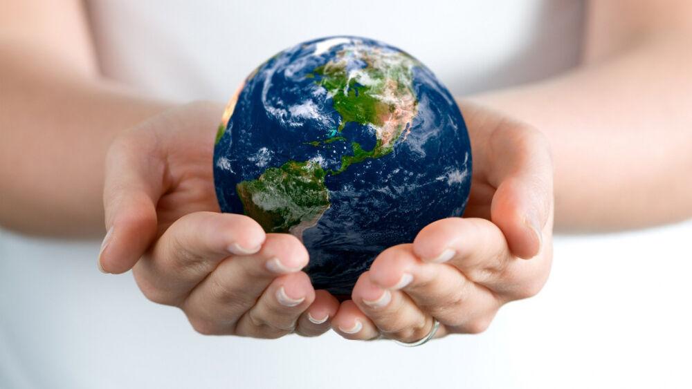 экология и мы