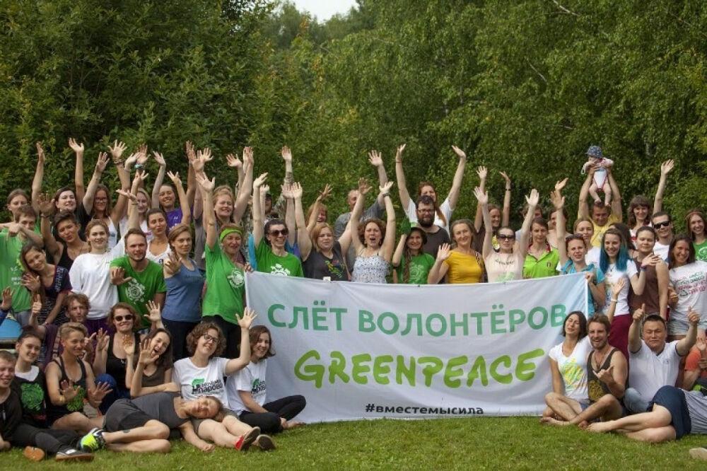 Волонтерский слет Гринпис — 2018: «Это наш вклад в развитие ...