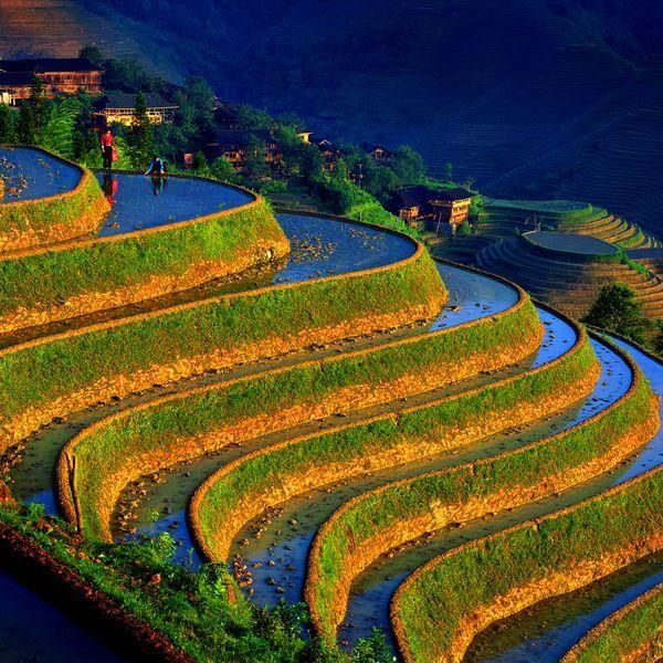 Китай: Рисовые террасы, горные пейзажи (фото) | COGITO PLANET