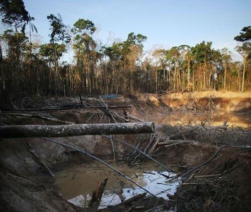 Искатели золота в Перу создали экологические проблемы
