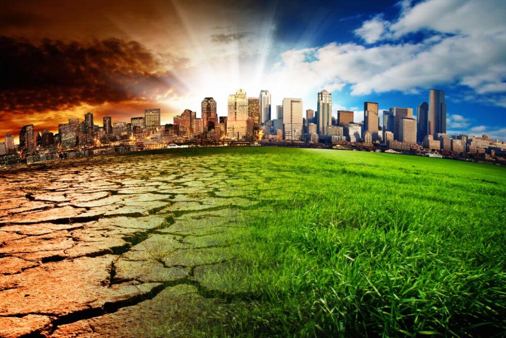 Загрязнение окружающей среды и пути решения экологических проблем