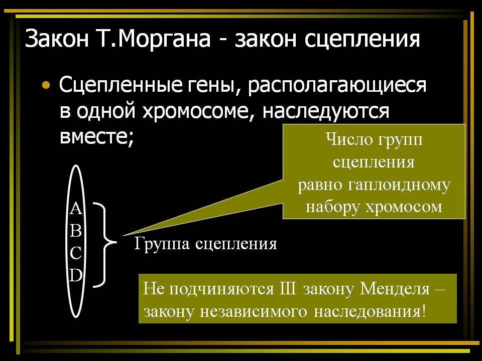 Хромосомная теория наследственности - Презентации по биологии