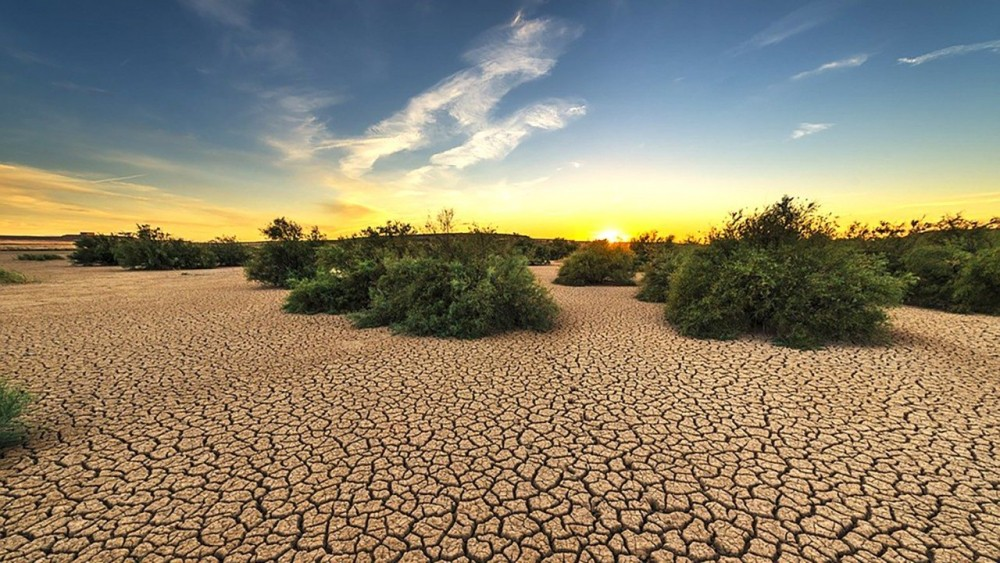 Пустыня Сахара увеличилась на 10% за последние 93 года
