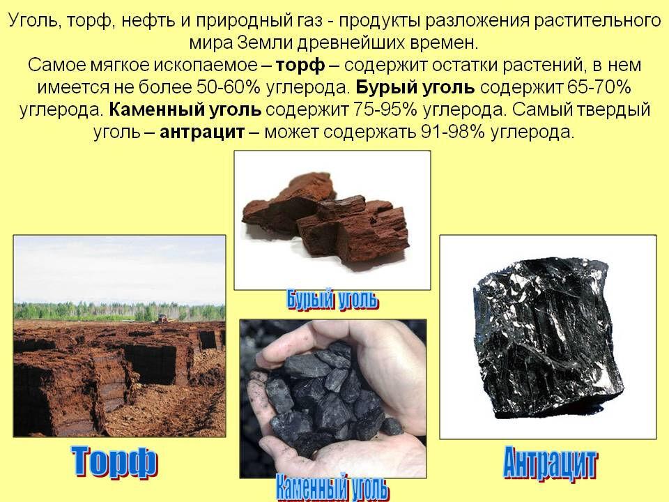 исчерпаемые возобновимые ресурсы (главный ключ)
