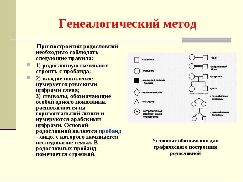 issledovanie-genetiki-cheloveka-4