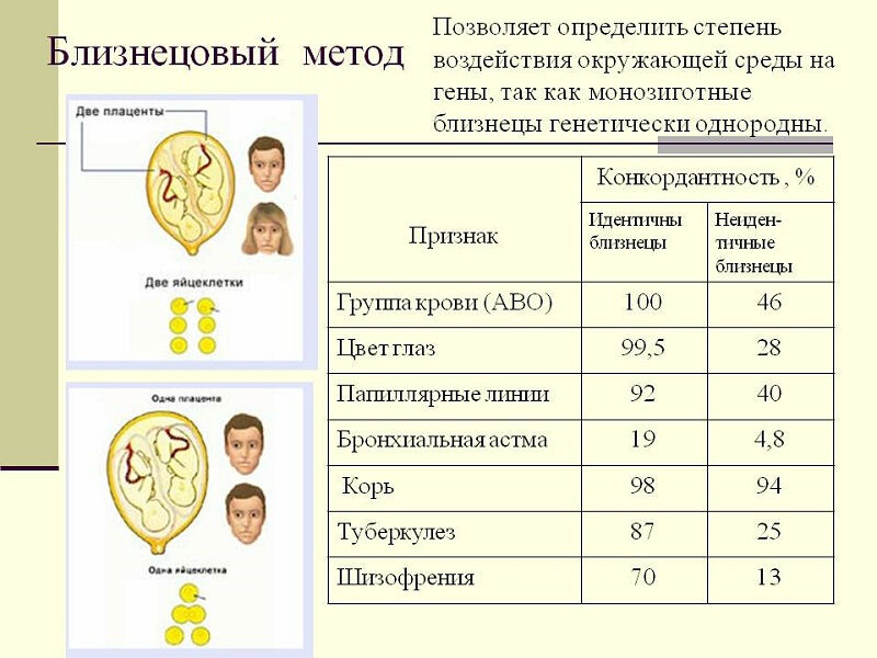 issledovanie-genetiki-cheloveka-5