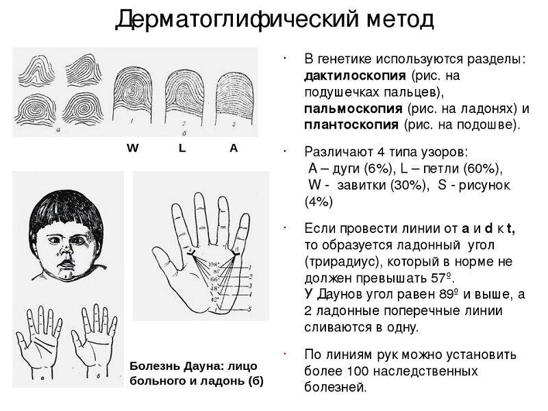 issledovanie-genetiki-cheloveka-8