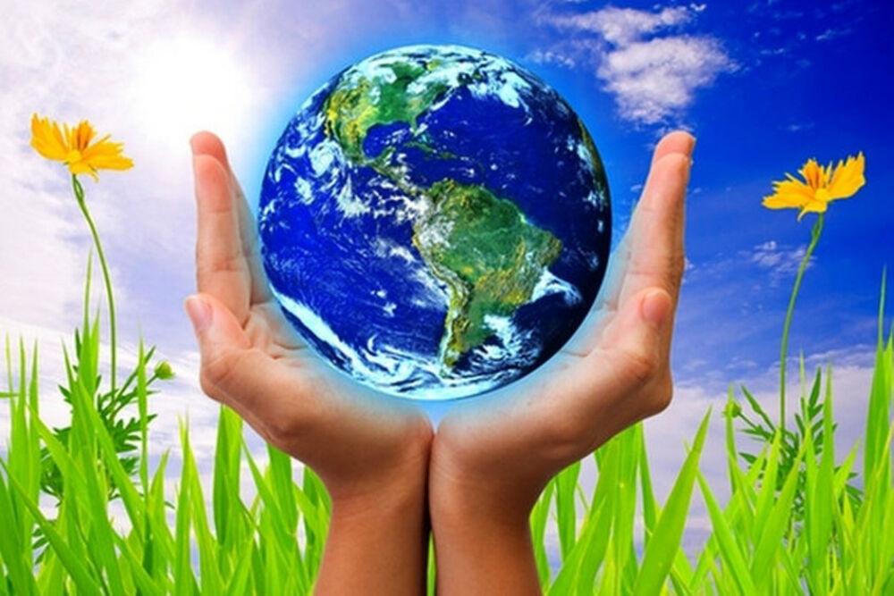 Почему нужно беречь природу? | ПОЧЕМУХА.РУ ответы на вопросы.