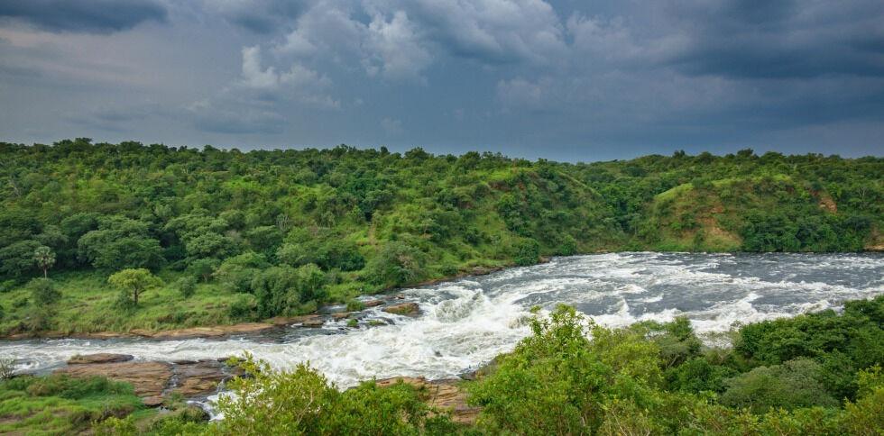 Река Нил (Nile River) srcset=