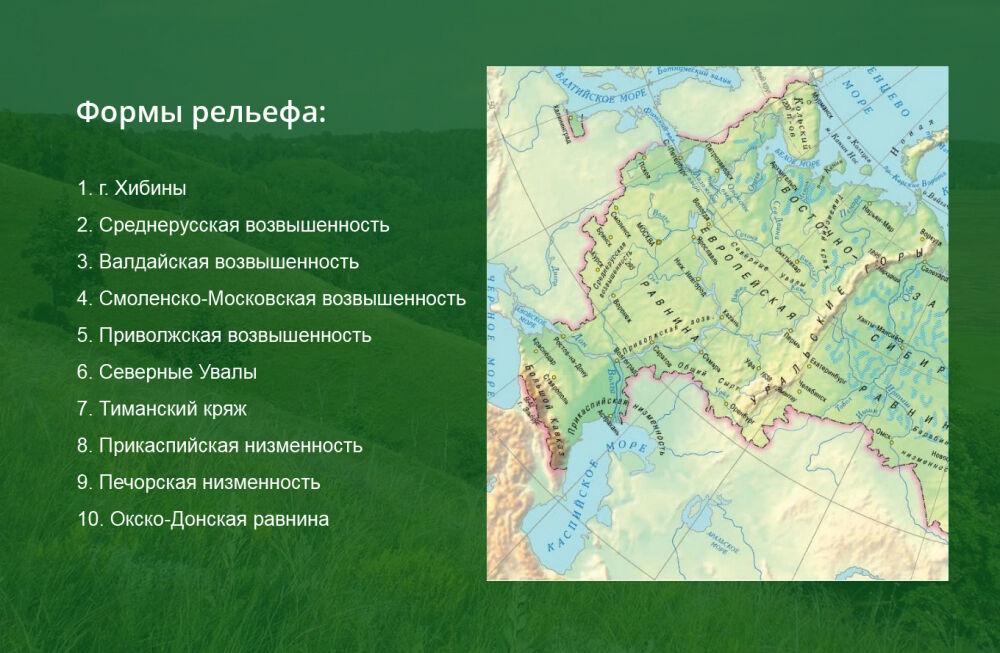 восточно европейская