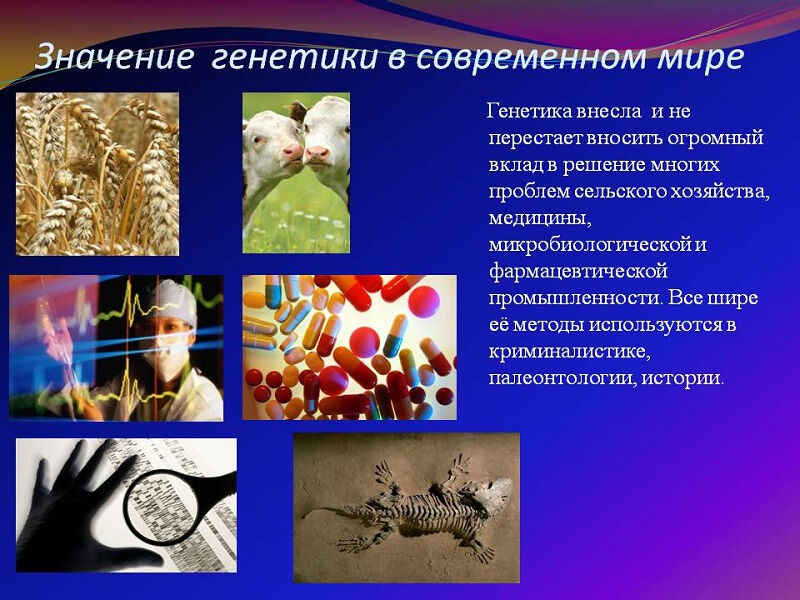 osnovy-genetiki-cheloveka-14