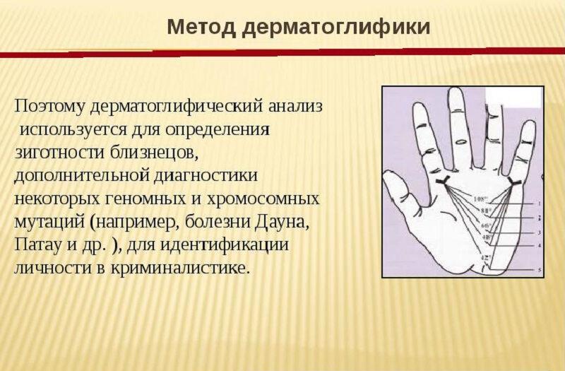 osnovy-genetiki-cheloveka-11