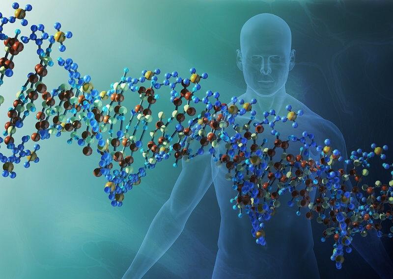 osnovy-genetiki-cheloveka-1