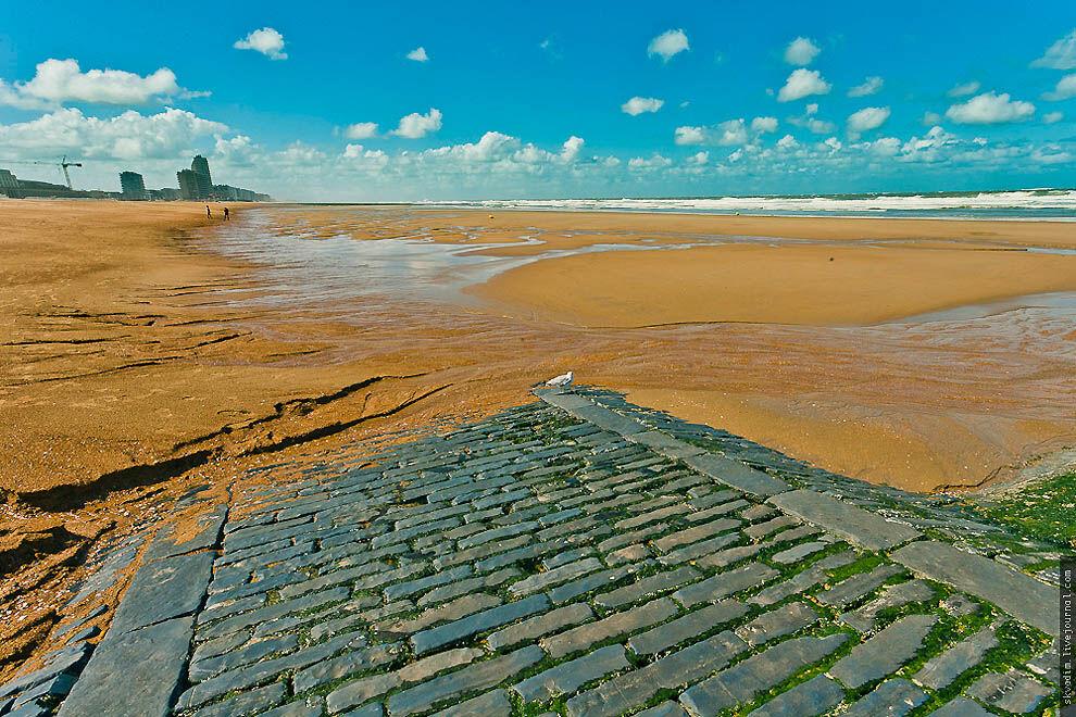 Бельгия. Северное море • НОВОСТИ В ФОТОГРАФИЯХ