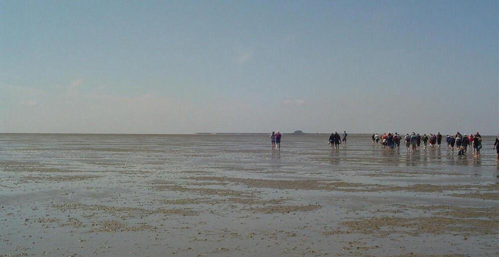 Германия. Северное море. Прогулка по ваттам. — рассказ от 31.01.13