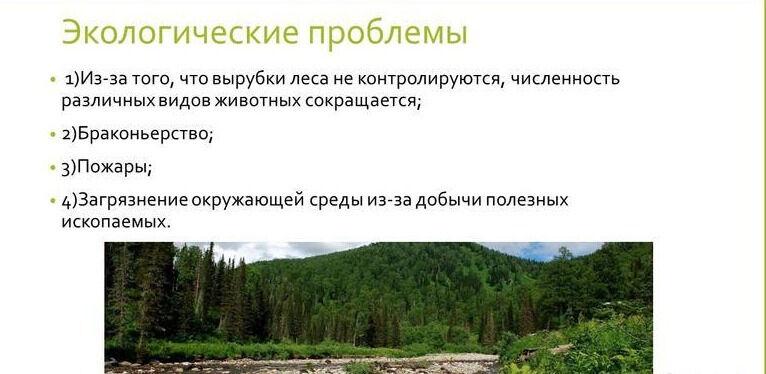 Презентация на тему: ТАЙГА. Скачать бесплатно и без регистрации.