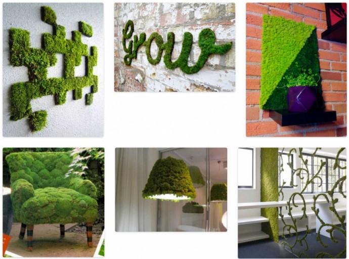 Живой мох в интерьере: идеи декора, советы по уходу | Colors.life