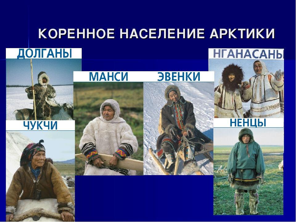 какая природная зона преобладает в россии