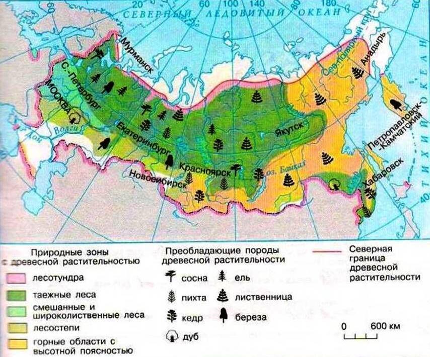 лесоизбыточные регионы
