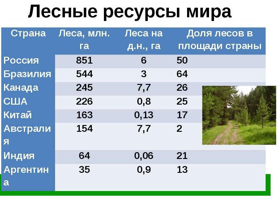 Природные ресурсы мирового хозяйства - презентация к уроку Географии