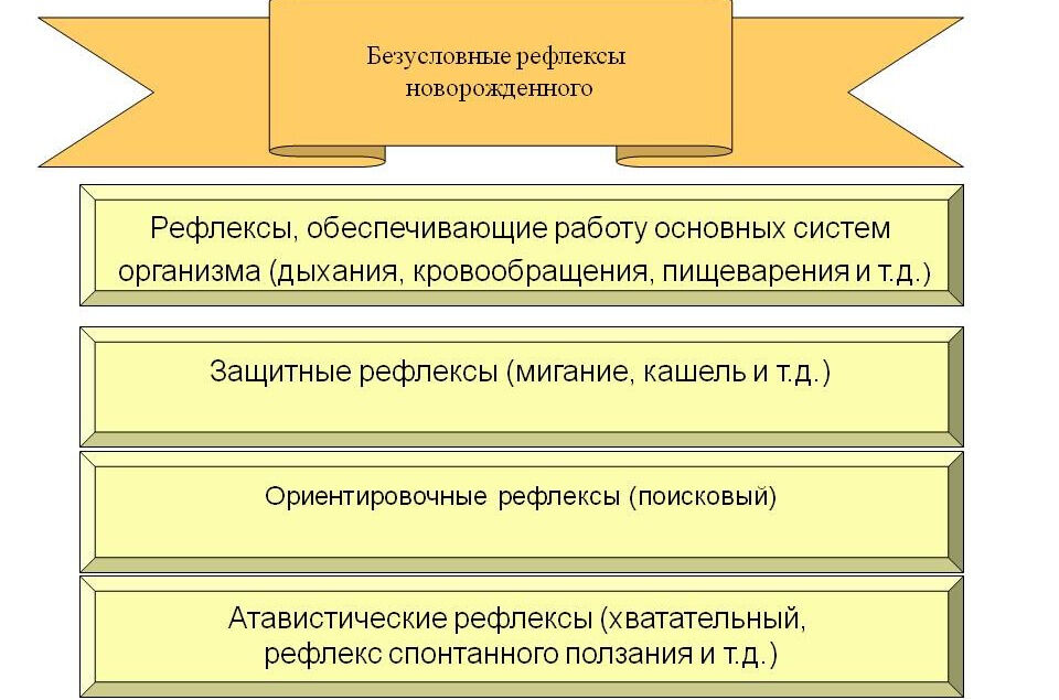 Безусловный рефлекс - психология