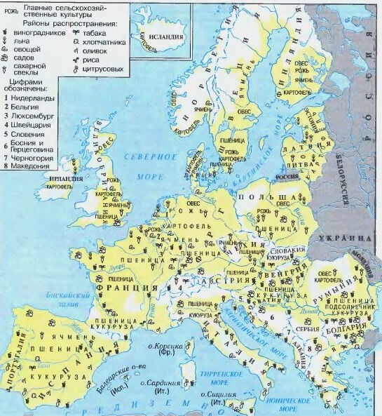 каковы главные особенности хозяйства европы