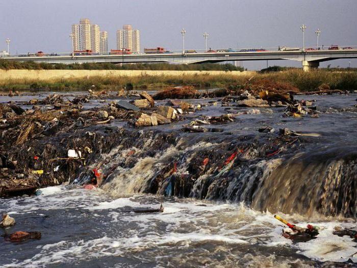 Экологические проблемы - загрязнение воды. Источники загрязнения ...