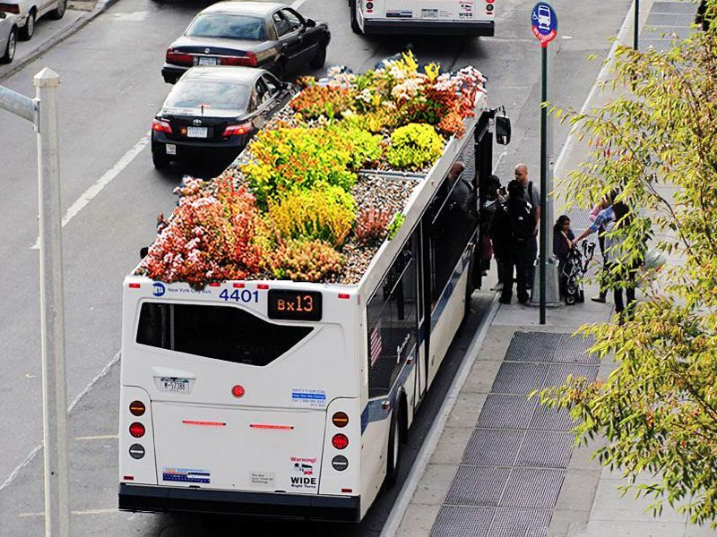 Bus Roots: Green Roofed Bus is a Garden That Goes... | Hah-Made you ...