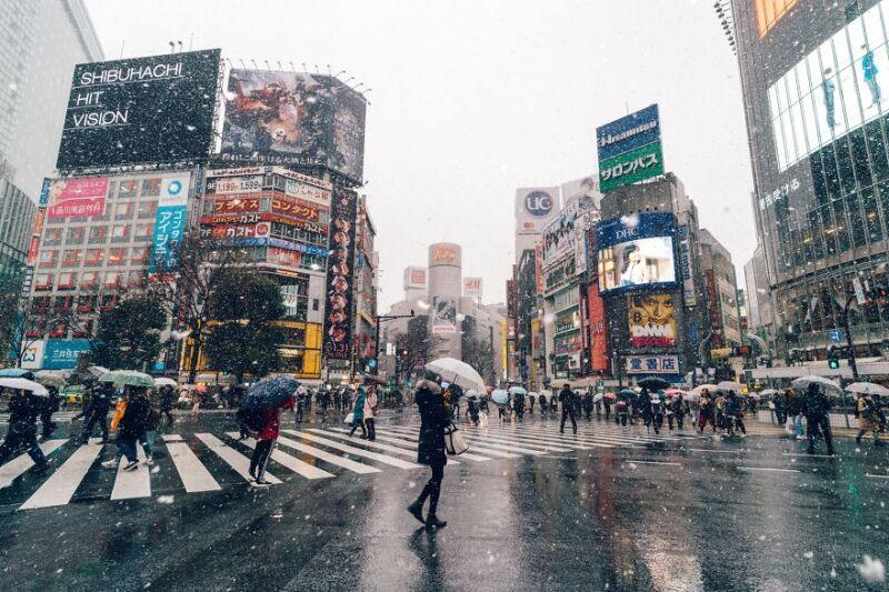 Снежный Токио - 2018