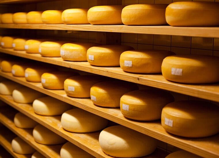 Твердый сыр «Чеддер Даниэль» производства Новгород-Северского сырзавода