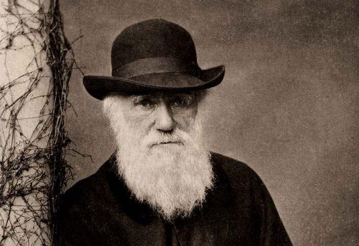 Чарлз Дарвин и эволюционная теория. Часть 2