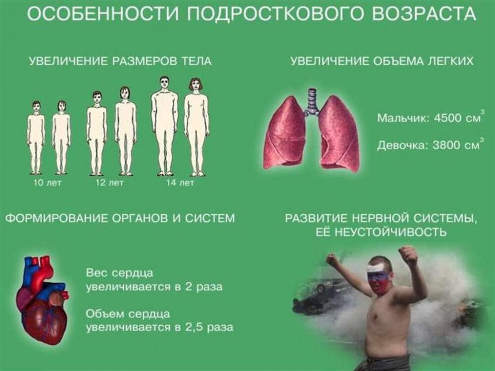 Физиологические и психологические особенности развития организма ...