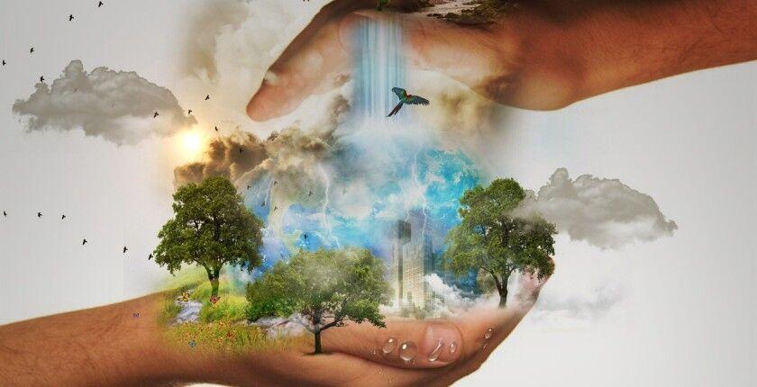 Стиль жизни и окружающая среда» — МОУ СОШ № 5