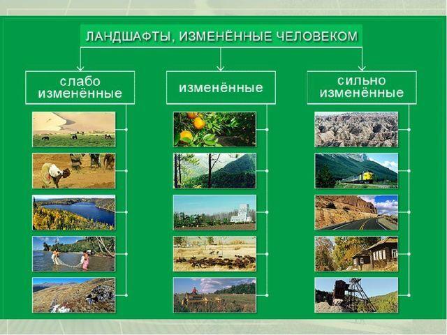 Презентация по географии на тему Антропогенные ландшафты (6 класс)