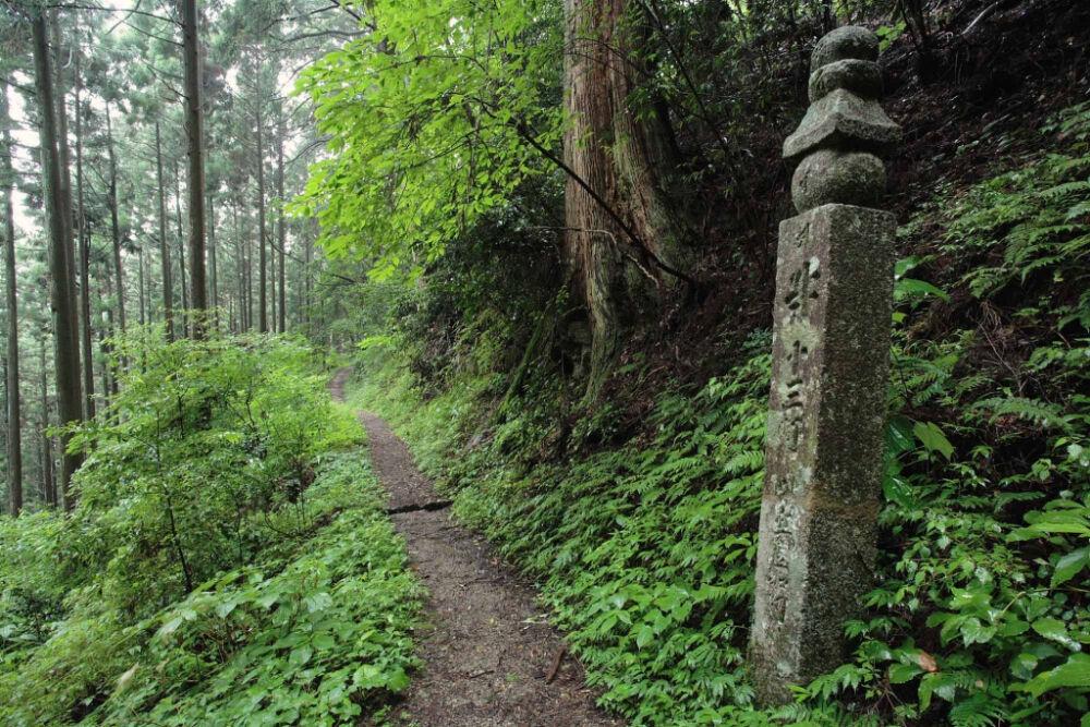 Гора Коя / Вакаяма