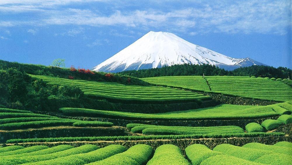 Страница о Японии