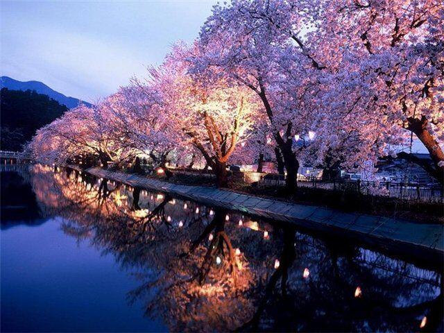 Климат Японии | Блог Антона Машнина