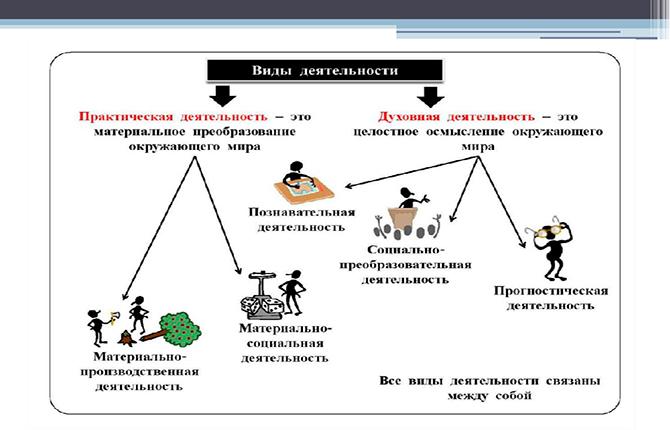 Виды деятельности человека