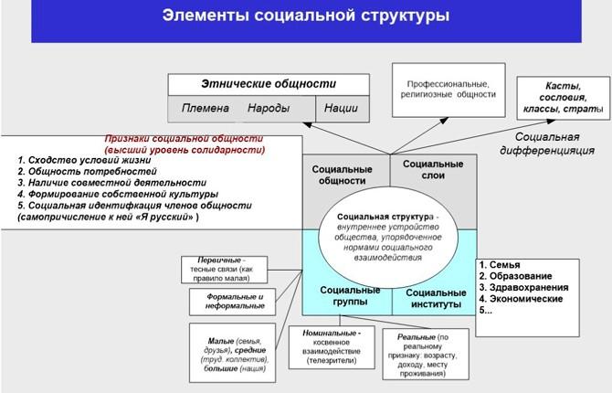 Элементы социальной структуры